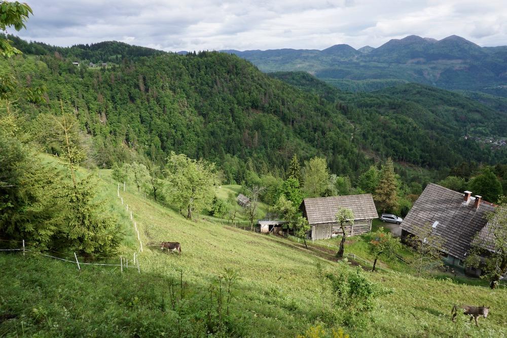 Goreljek Triglav National Park Slovenië