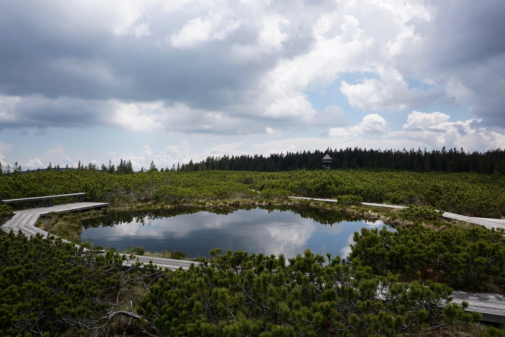 Lovrenška jezera Slovenië
