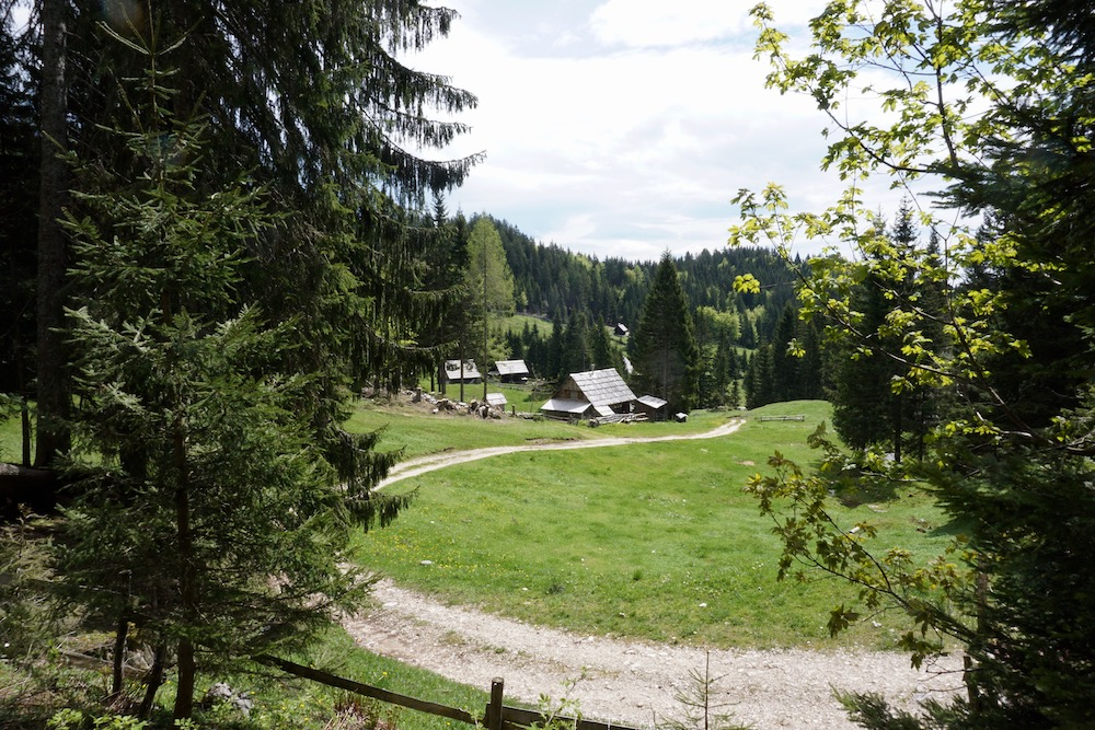 Planina Zajamniki Triglav National Park Slovenië