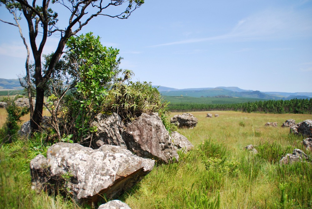 Mpumalanga Zuid-Afrika