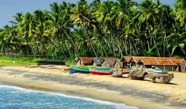 Goa 5 Nights 6 Day Tour Packages 44