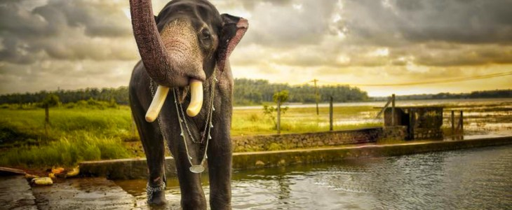 10 OffBeat Destinations In South India 20