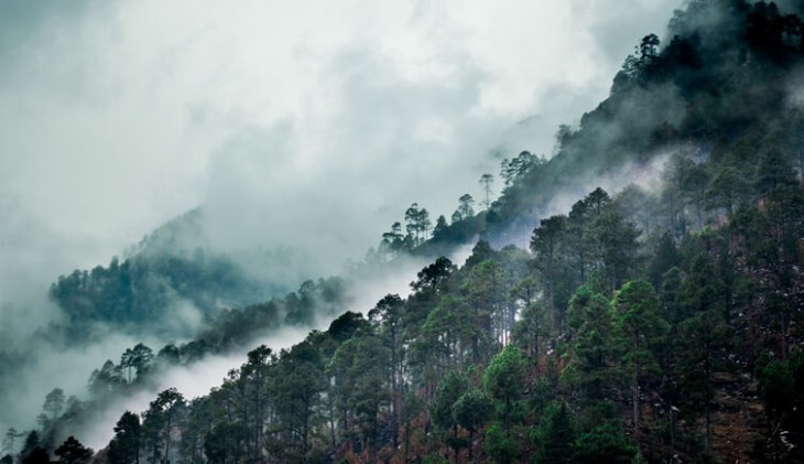 Top Attractions and A guide of Kasol 3