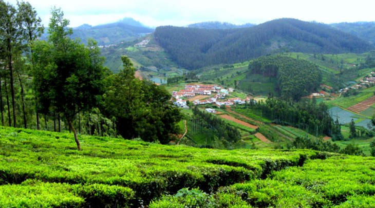 Ooty Coonoor Tour Package 3 Nights 4 Days 54