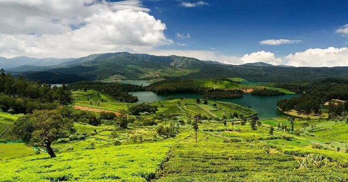 Coimbatore Ooty Kodaikanal 5 Nights 6 Days Tour Package 53
