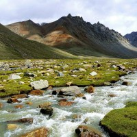 Mussoorie-Dehradun-Auli 4 Nights 5 Days