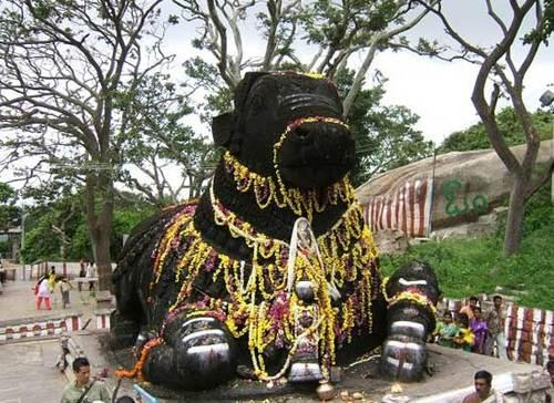 Coorg Mysore Tour Package 5 Nights 6 Days 13
