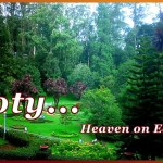 Ooty Tour Package 2 Nights 3 Days 5