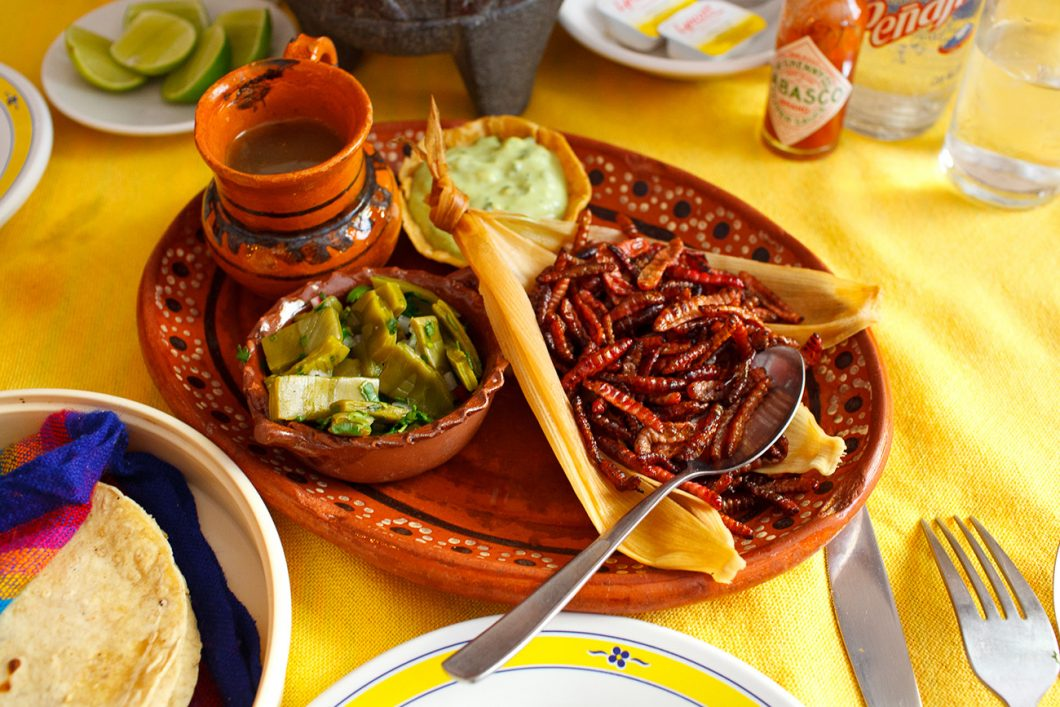 Chapulines – a nutritious grasshopper meal in Mexico