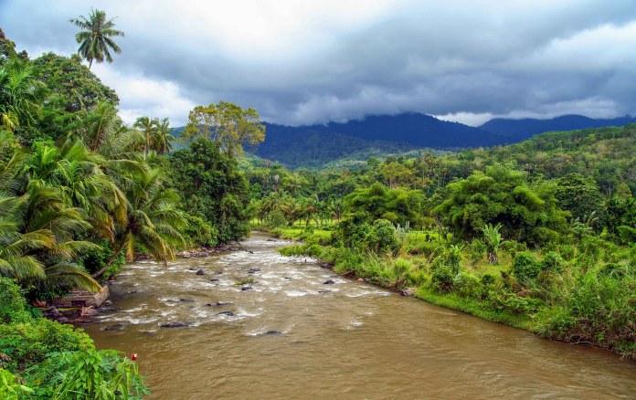 BUKIT BARISAN - THE TROPICAL RAINFOREST HERITAGE OF ...