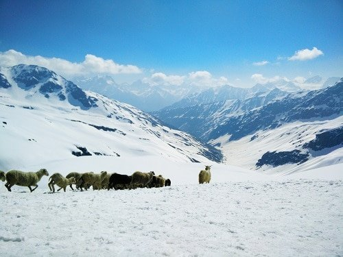 View from Rupin Pass.
