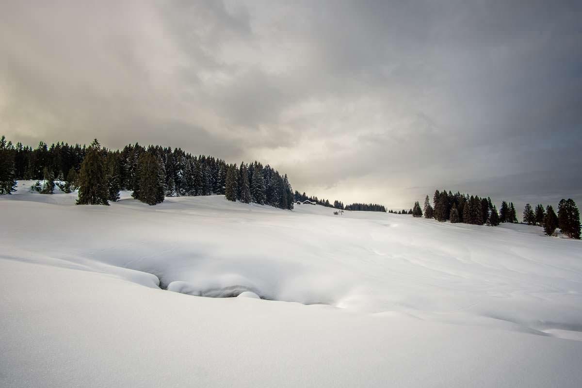 Alpe Metzeberg im Allgäu