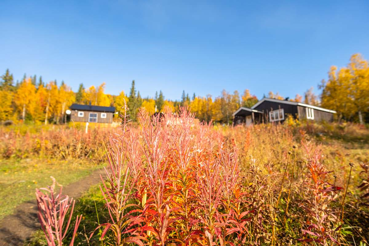 Fjellstation Aktse in Lappland