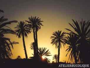Voyage au Maroc atelierbucolique-4