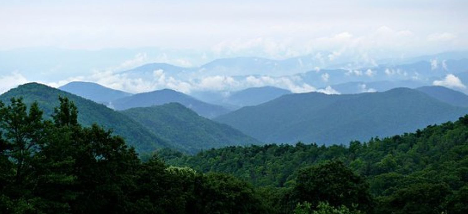 Scenic view at the Great Smoky Mountains National Park