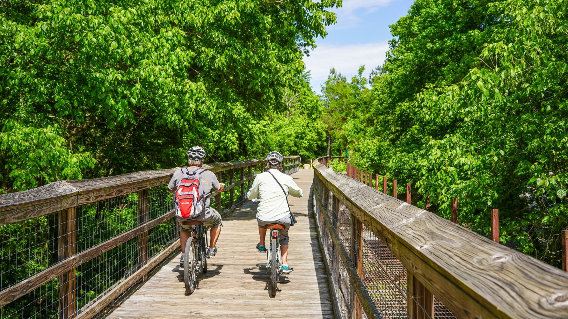 Palmetto Trail