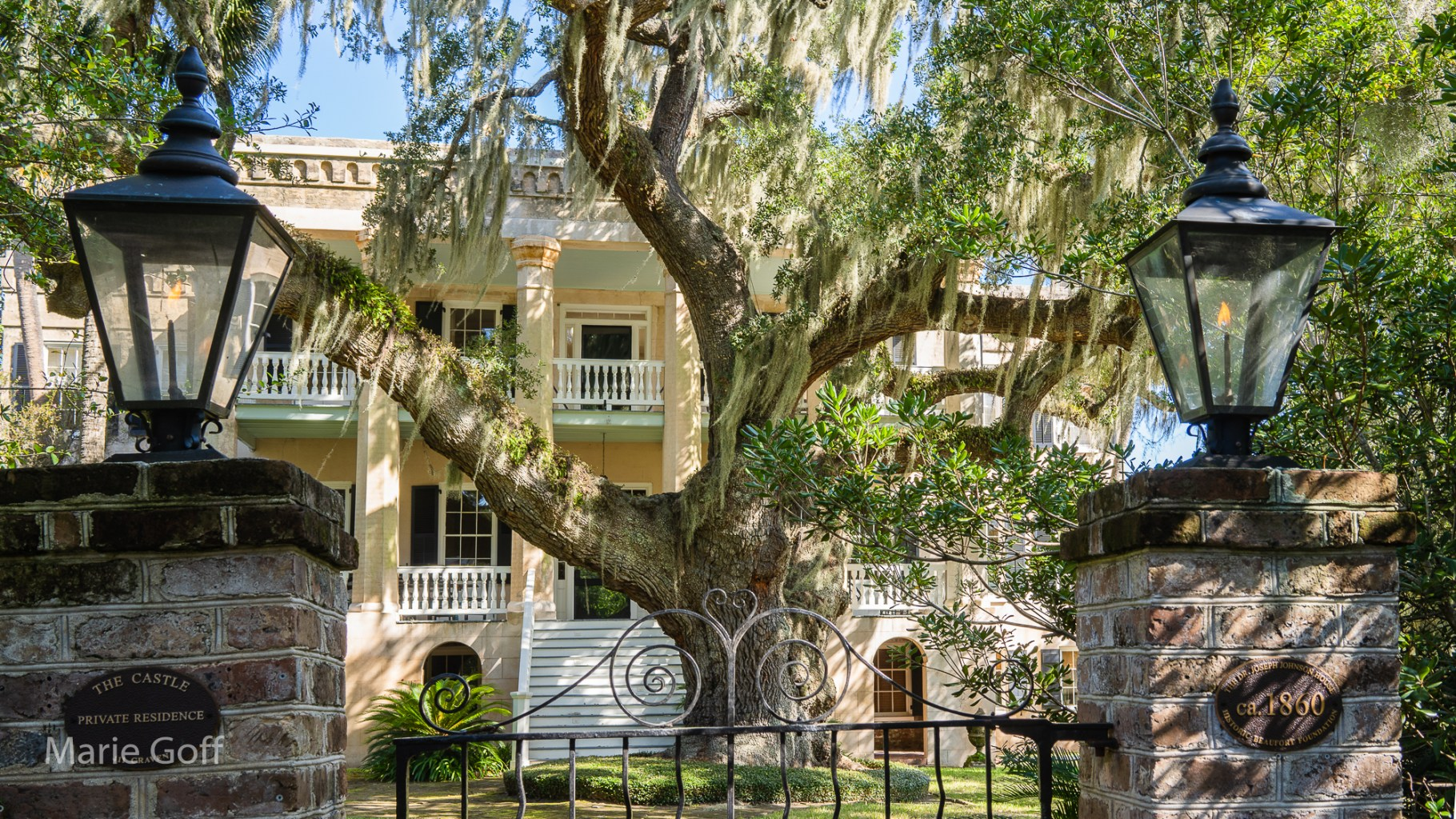 Lowcountry Photography Tour