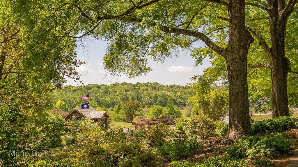 South Carolina Botanical Garden