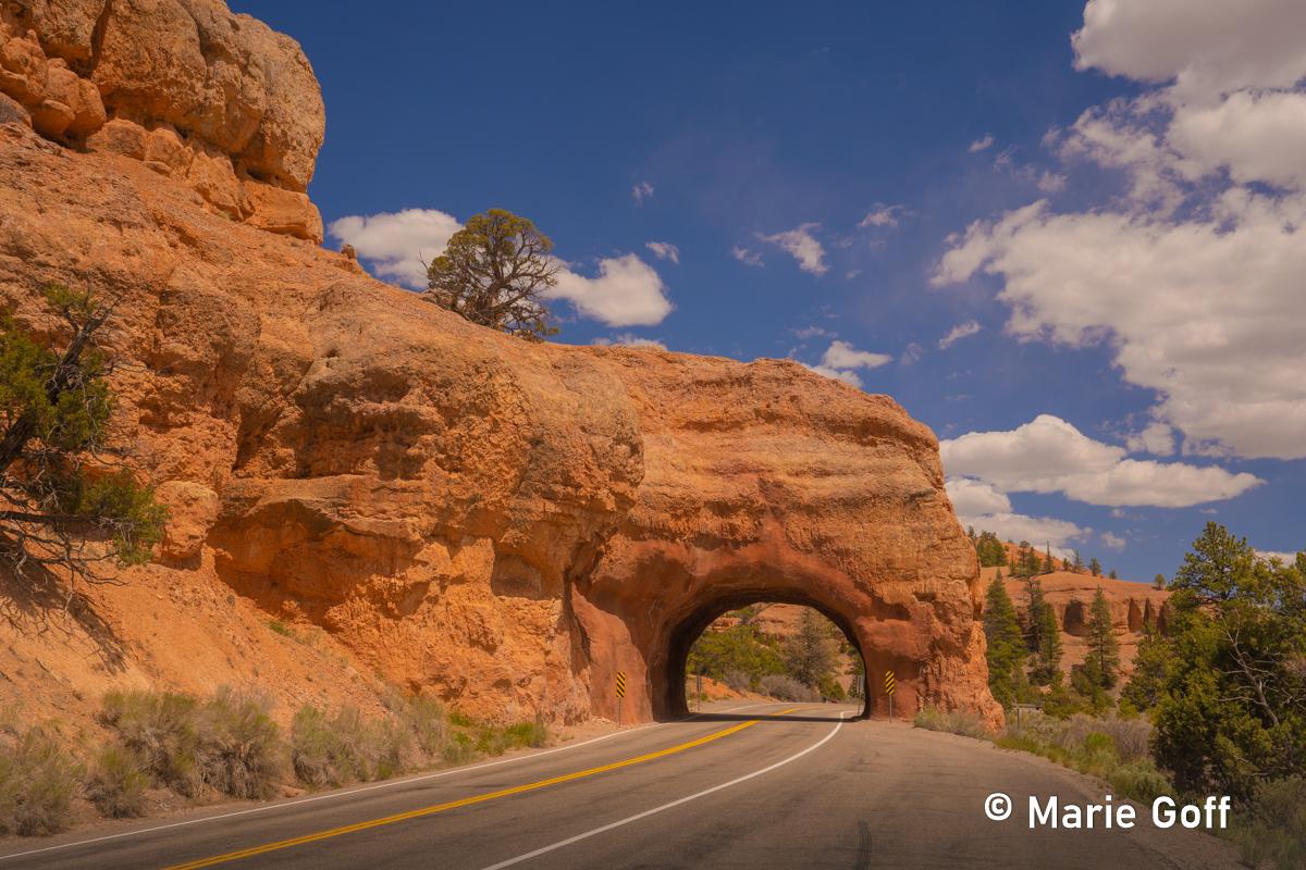 Southern Utah Road Trip