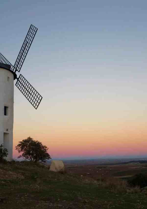 white windmills on a hill sunset