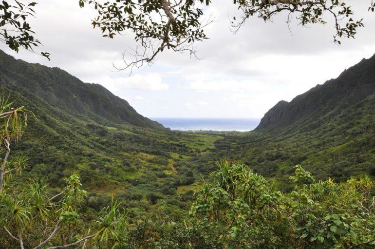 Kuala ATV and Movie Tours Oahu Hawaii