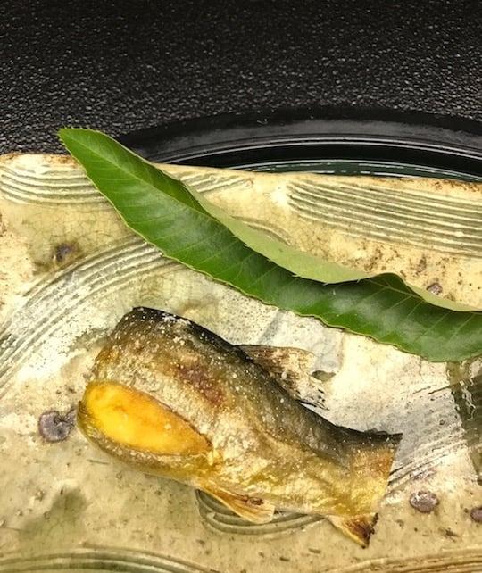 Ayu Sweet fish in Gifu Japan