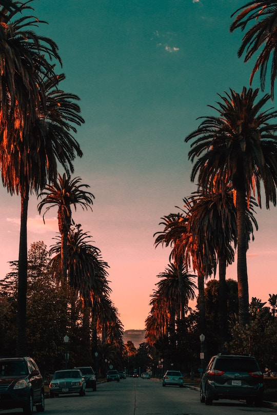 Los Angeles and the USA are great for vegan and vegetarian friendly travel