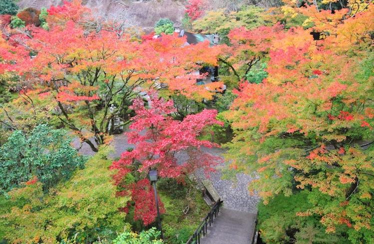 nature in kanazawa