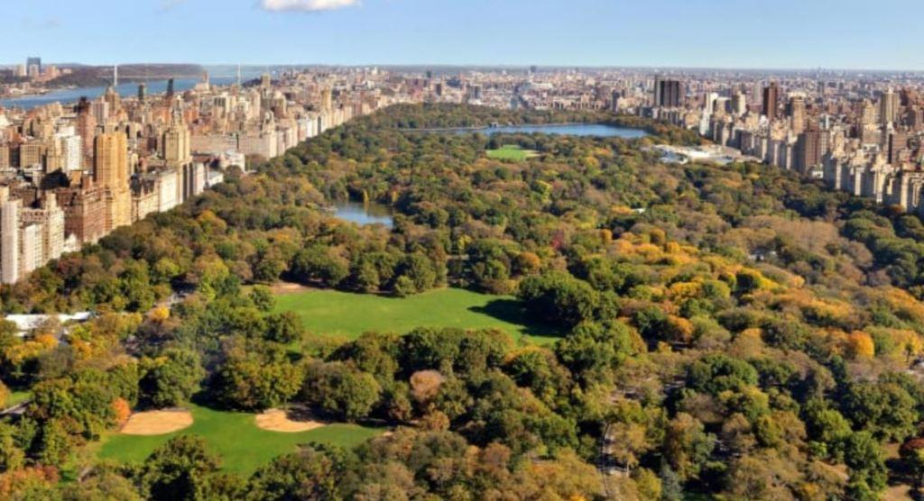Park Hyatt New York Luxury suite view