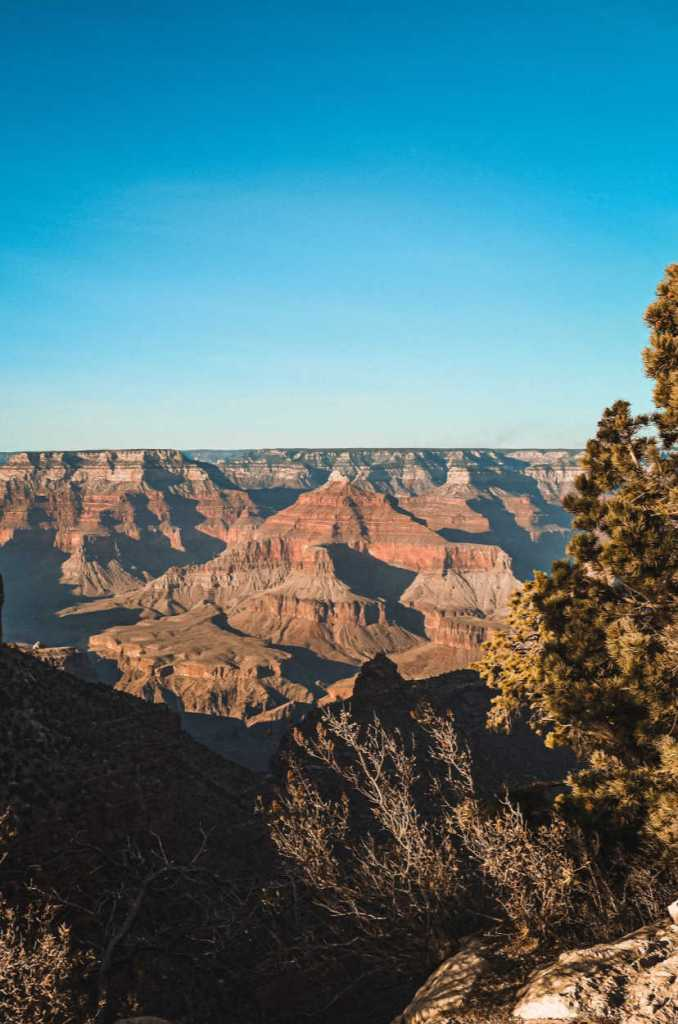 Grand Canyon reopening in phases