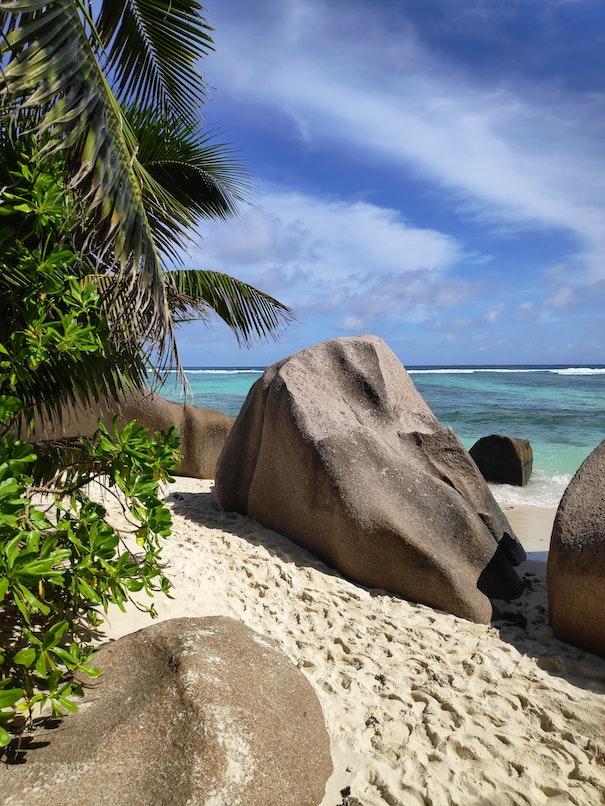 seychelles reopen
