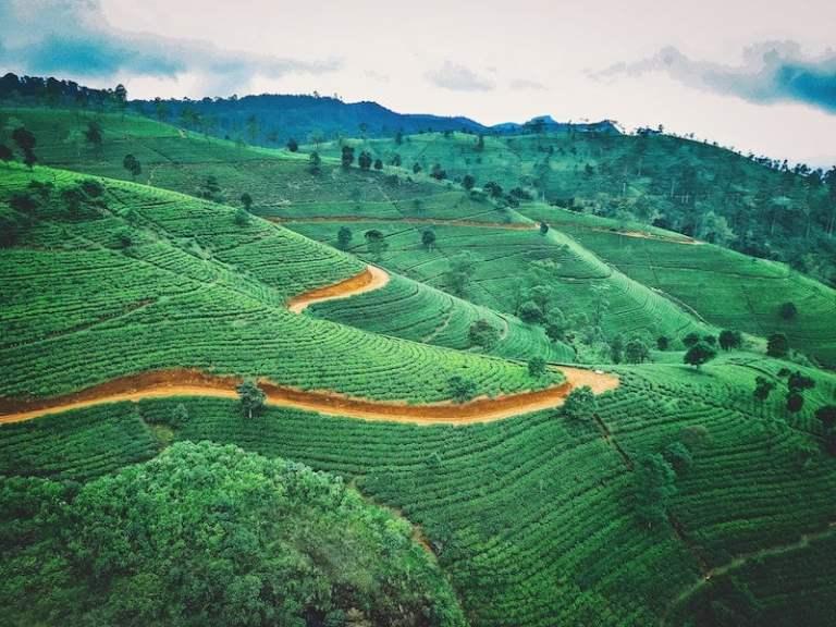 sri lanka reopen for tourism