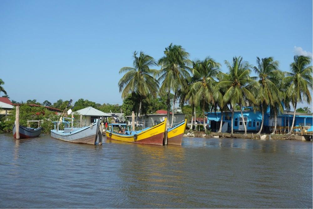 Suriname (1)