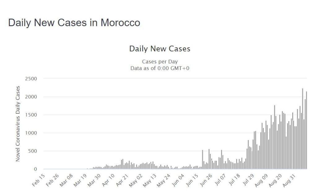 Daily Number of COVID-19 Cases in Morocco (Image - Worldometers)
