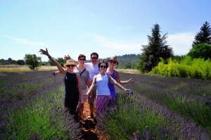 provence tour dates prices