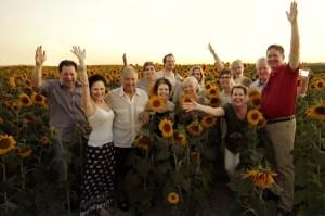 june-sunflowers