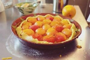 provence tart