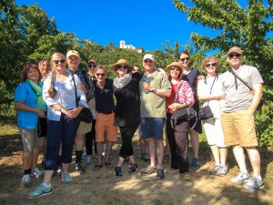 OTBP-Provence-walking-tour-15
