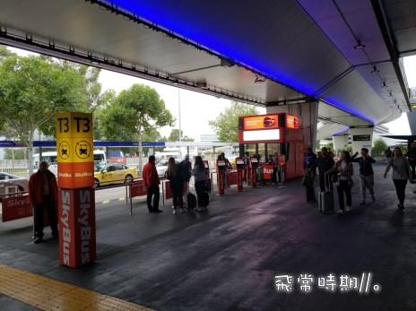 機場外各大樓外的Skybus Terminal,正常都有售這張遊客專用的MyKi Explorer卡。