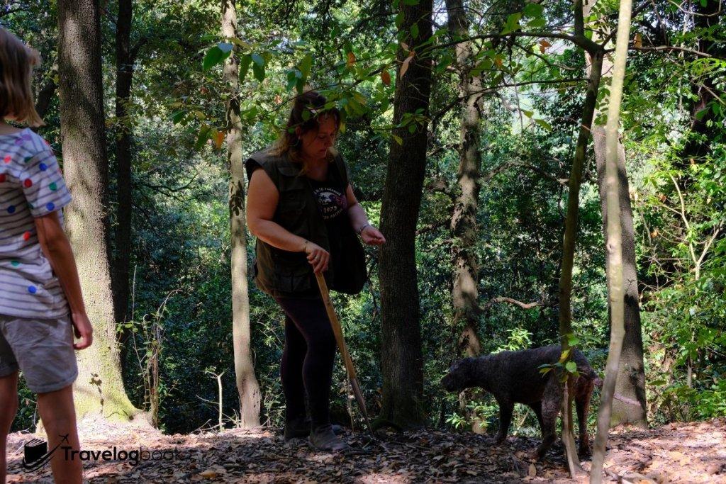 女獵人Francesca以及她的五歲松露狗Cioco