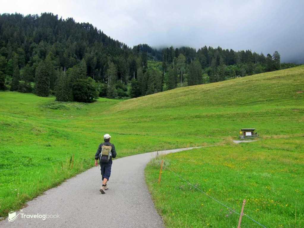 看到兩旁青蔥的草地,就知道已登上了Heidi-alps,抵達終點Heidi's Mountain Meadow了。夏天時,海迪和爺爺便住在這裏,彼得經過時就會順便把Little Swan和Little Bear帶上山。