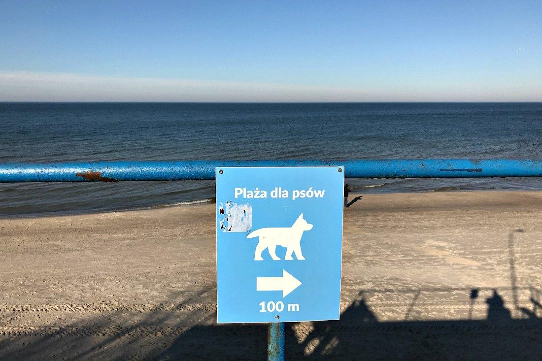 Reizen met hond Hondenstrand Polen