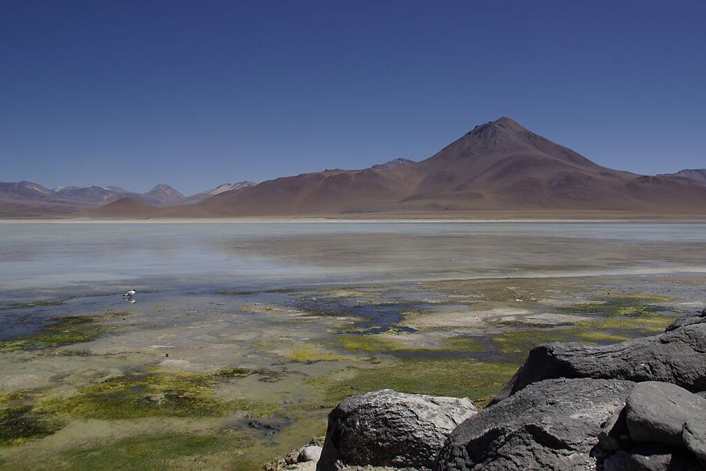 Laguna Blanca im Altiplano von Bolivien