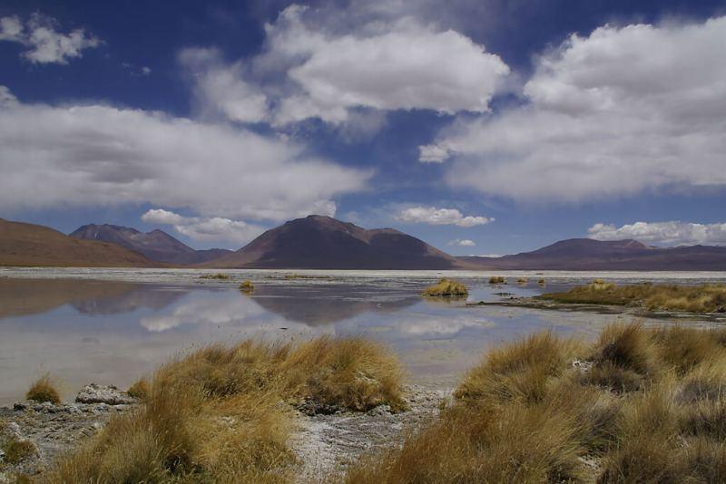 Lagunen und Vulkane in der höchsten Wüste der Welt