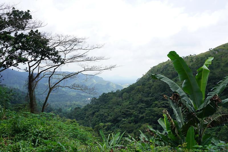 Blick vom Plateau Regional in Togo