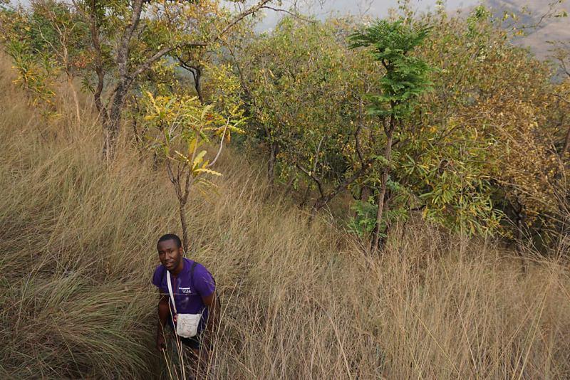 Wandern im Agumatsa Resort in Ghana