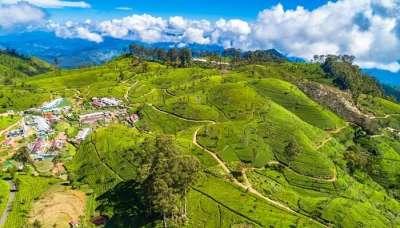 Haputale Sri Lanka Travel Partner