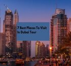 7 Best Places To Visit In Dubai Tour