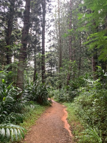 Wai Koa Loop Trail