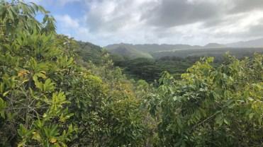 Sleeping Giant Trail vista